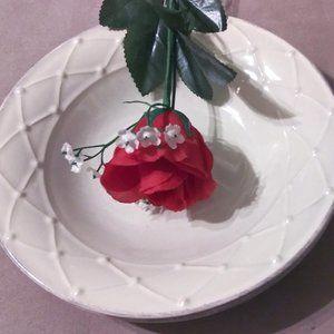 Casa Stone by Casafina Stoneware Pasta Soup Bowls